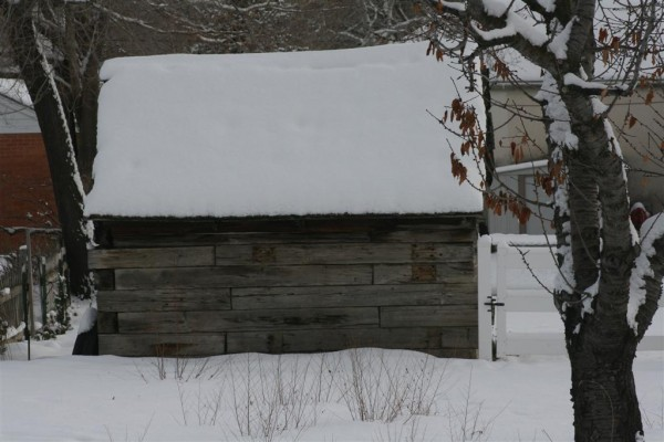 shed in winter
