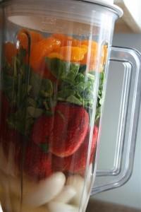 blender with fresh food