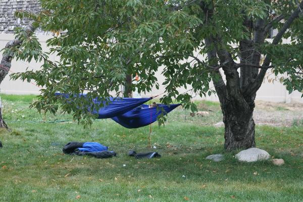 hammocks3