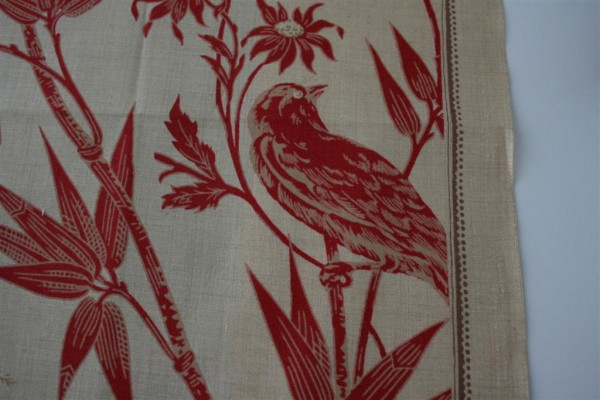 Lumiere de Noel bird print