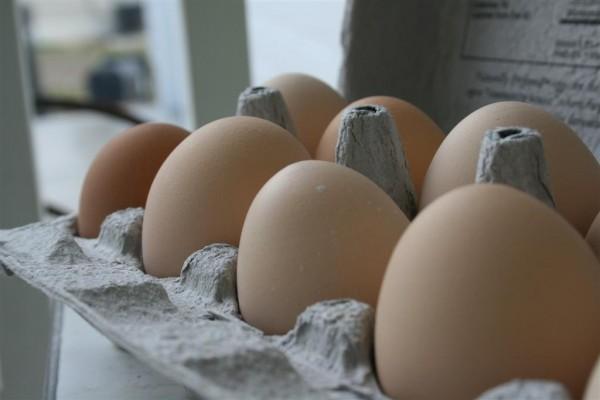brown eggs 2