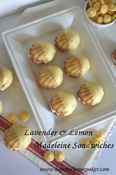 lavender&lemonmadeleines